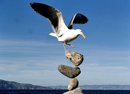 Precarious Position 1